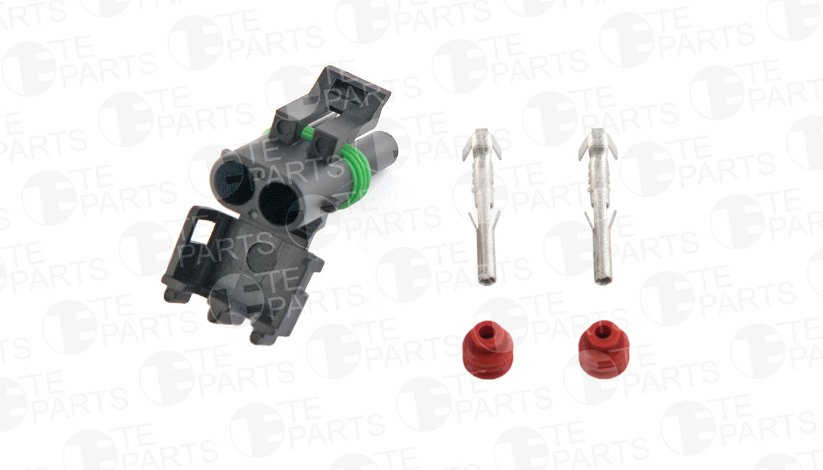 7730522 2-pin Plug for FORD / GM